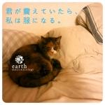 【大喜利】ニャースミュージック&エコロジー