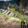ペルー・ボリビアの旅 その9【5日目】マチュピチュ遺跡内部編