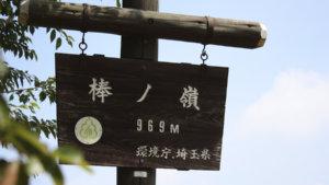 【奥多摩】棒ノ嶺(棒ノ折山)で沢登り
